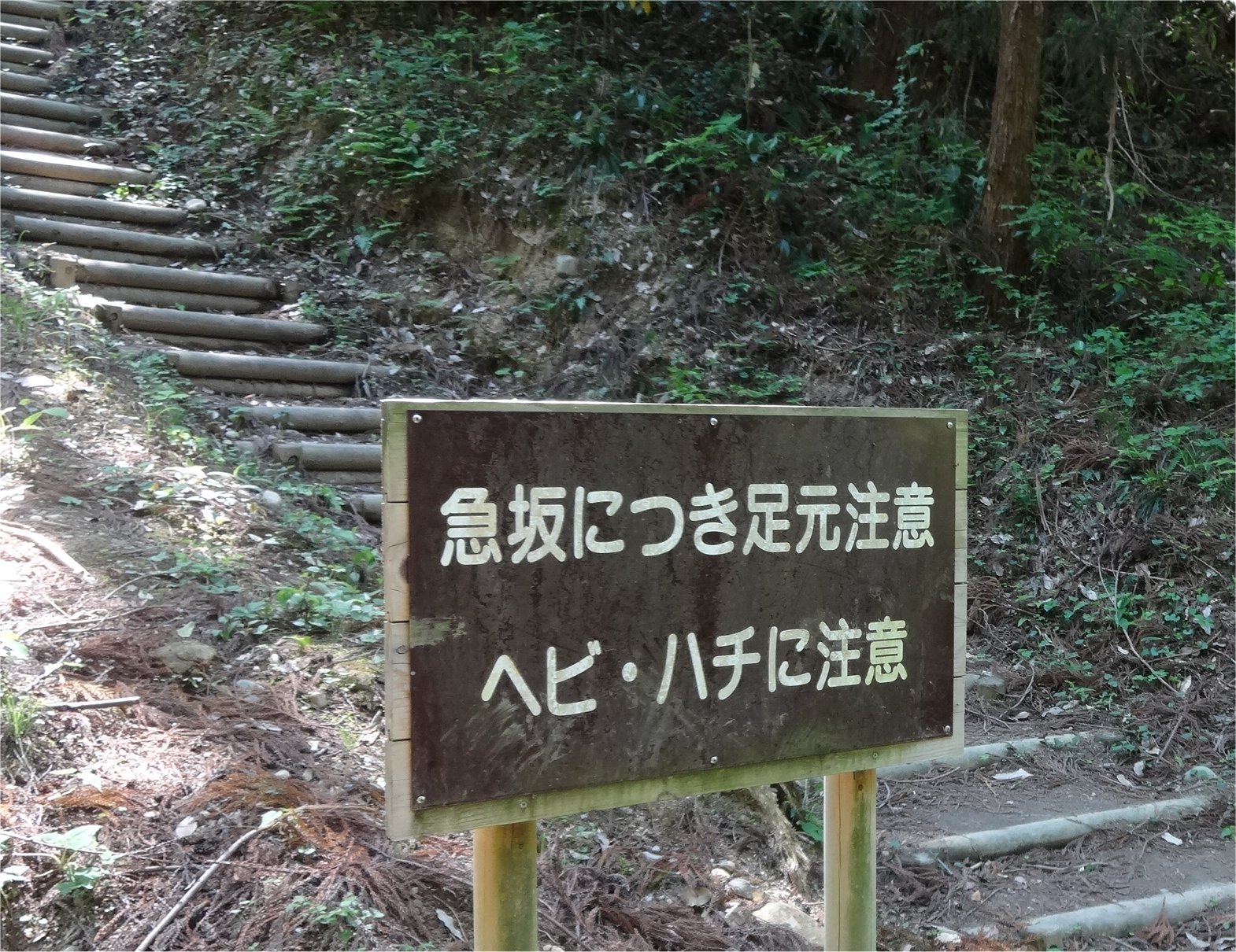会場案内03.jpg