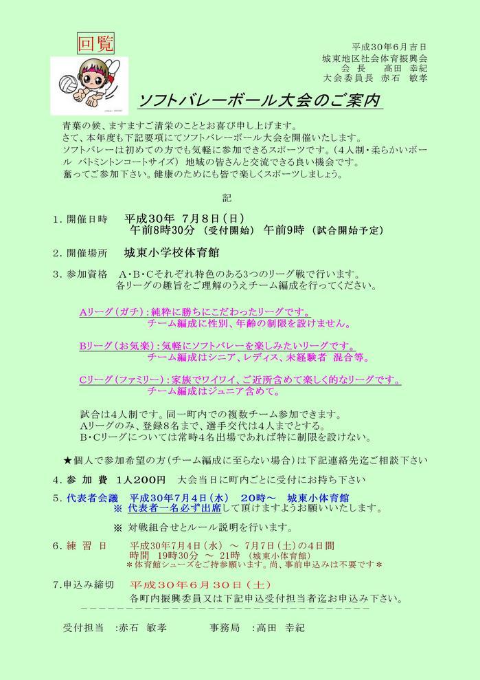 2018_07_08 ソフトバレーボールHPご案内 .jpg