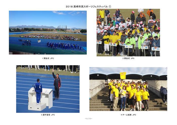 2018 市民スポーツフェスティバル-01 .jpg